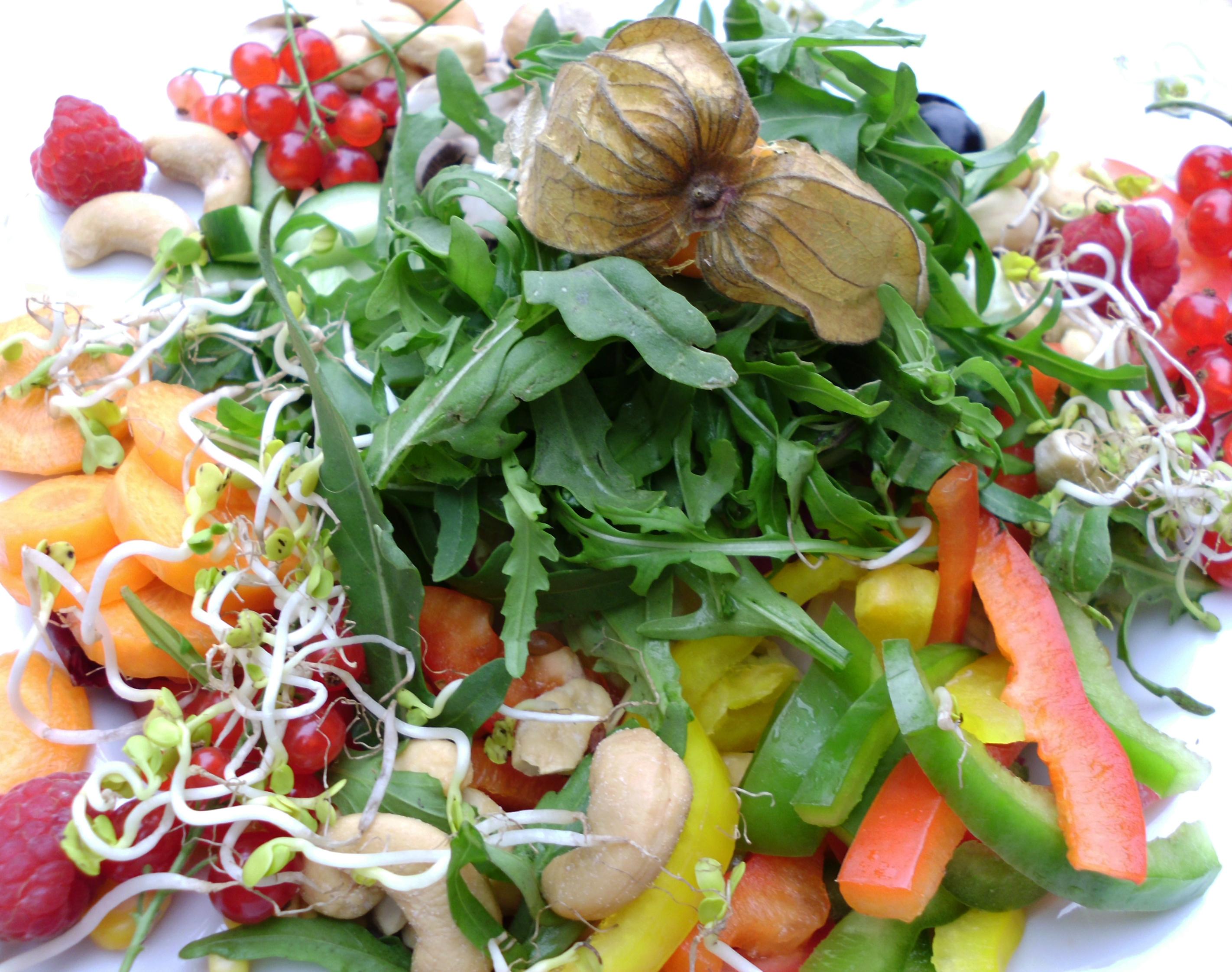 Bio-Lebensmittel, Salat und Früchte