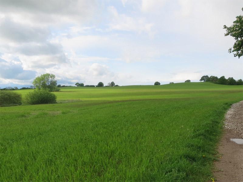 Landschaft mit sanften Hügeln