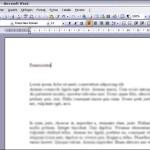 Screenshot einer Worddatei