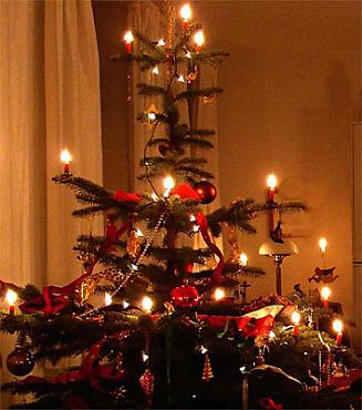 Weihnachtsbaum, hell erleuchtet