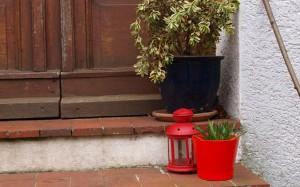 Treppenstufen mit Pflanzen