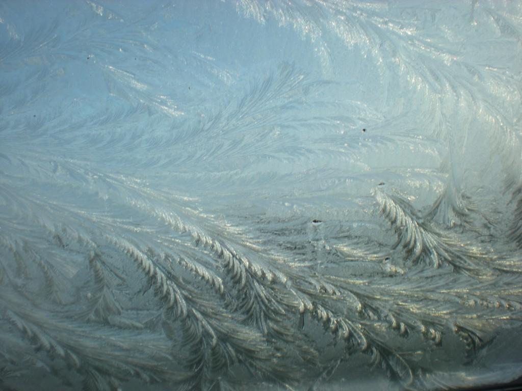 Winterimpressionen Eisblumen