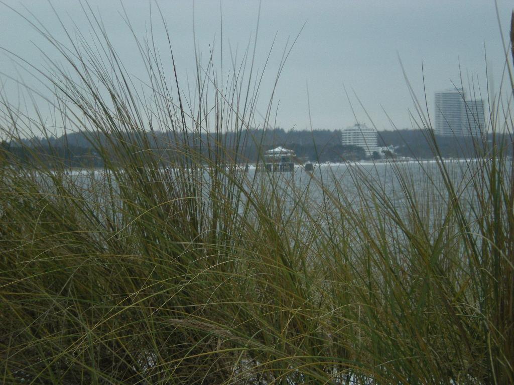 Meeresbucht mit Strandgras im Vordergrund