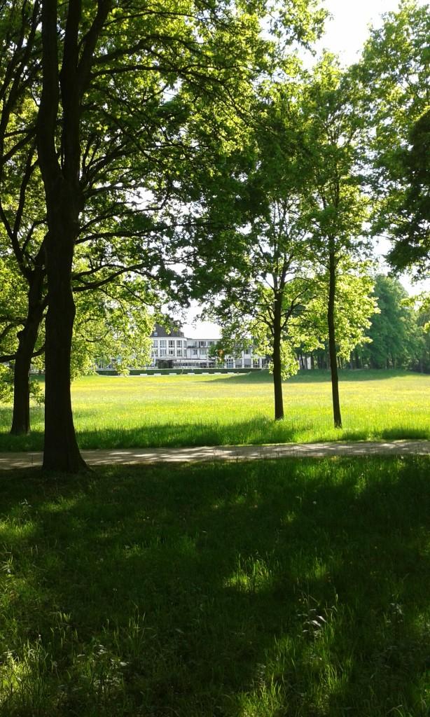 Parkhotel durch Bäume gesehen