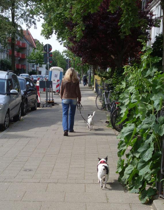Haustiere im Alter, Frau mit zwei Hunden