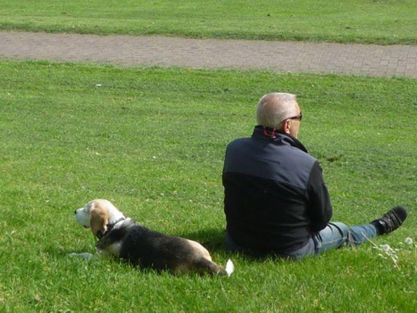 Mann mit Hund auf einer Wiese