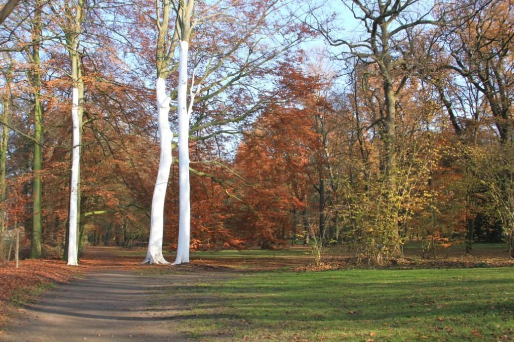 Parklandschaft im Herbst