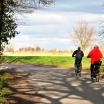 Fahrradfahrer vor norddeutscher Landschaft