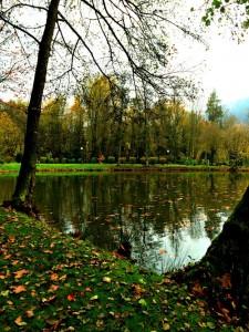 Herbstlandschaft, Park