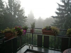 herbstlicher Blick von einem Balkon in einen Garten