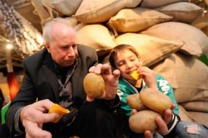 Großvater und Enkel mit Kartoffeln