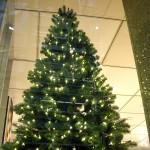 Tannenbaum mit Lichtern