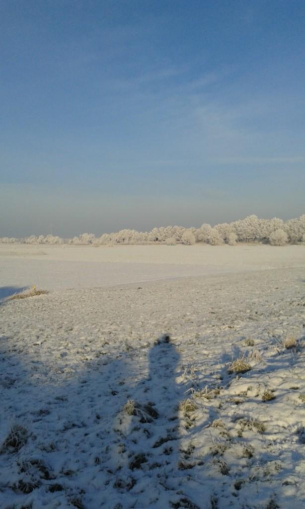 Winterimpressionen Langer Schtten einer Person auf verschneitem Feld