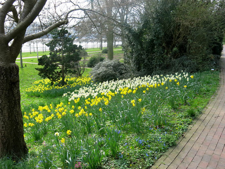Frühlingstag, Park mit Frühlingsblumen