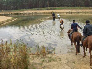 Reiten, Reiter durchqueren einen See