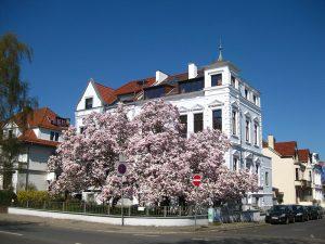 Haus am Osterdeich