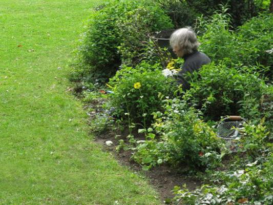 Garten-Sonett, Frau im Beet
