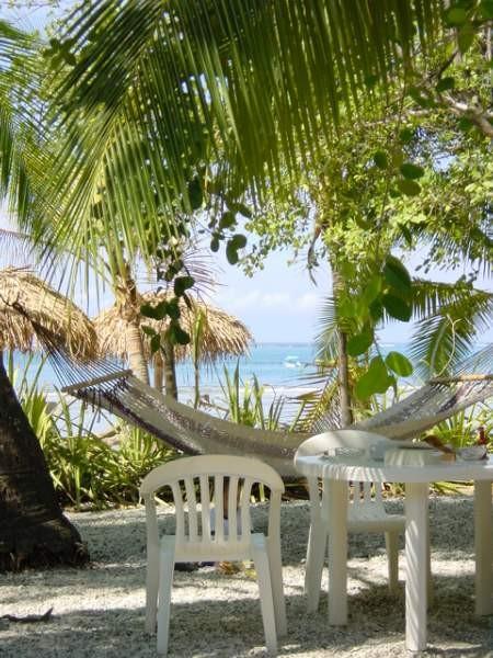 Reise-Messe, Ein traumhafter Sitzplatz im Schatten der Palmen