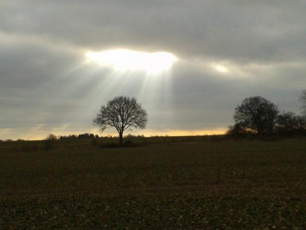 Himmelreißt über Landschaft mit Baum auf