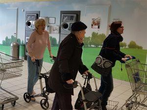 mobiler Einkaufswagen, Frauen mit Einkaufswagen