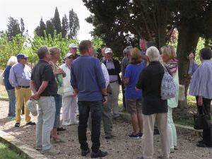 Vernetzung, Gruppe von Menschen unter einem Baum