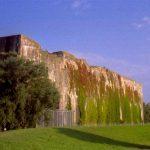 alter Bunker mit Pflanzenbewuchs